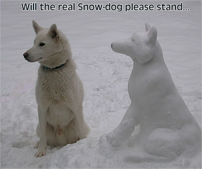 Wxspot Leconte trip Miller_snowdog