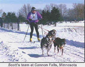 Scott Dahlquist 's skijoring team at the Cannon Falls, MN Race