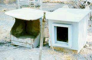 Sled Dog Central Kennel Tips Housing