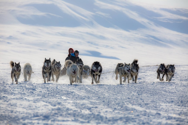 Mushers get ready for the Nunavut Quest to start in Arctic Bay.