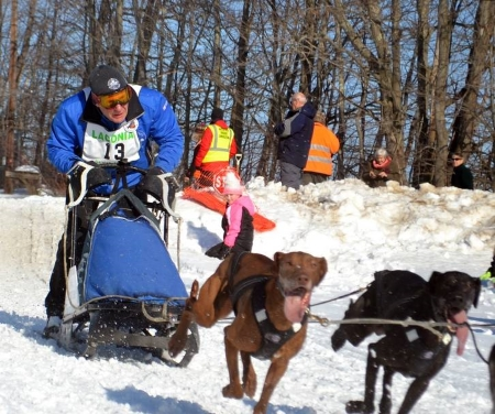 Guy Girard of St. Thomas de Joliette, Quebec, finished strong Sunday to win the 88th Laconia World Championship Sled Dog Derby.