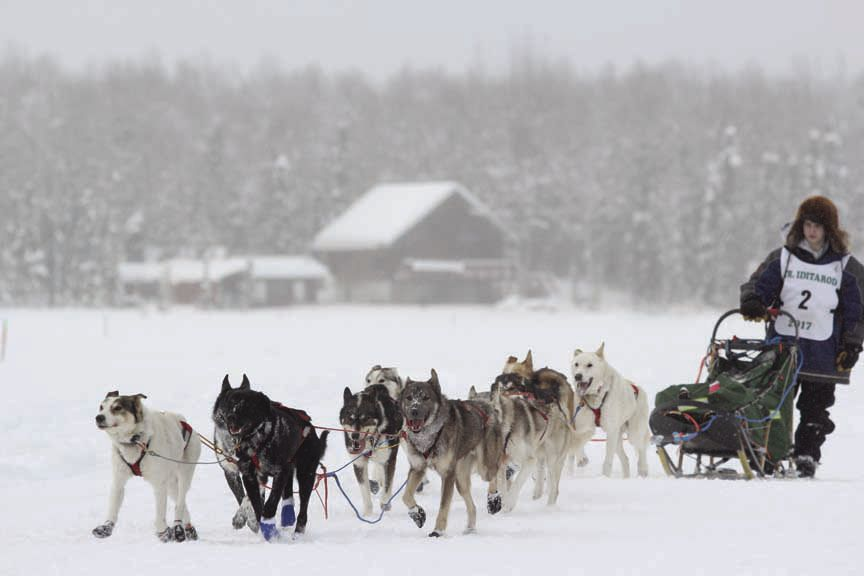 Colby Spears follows his team to the finish line in the 2017 Junior Iditarod. Introducted to the sport less than six months before, Spears finished as the runner-up in the race in February.