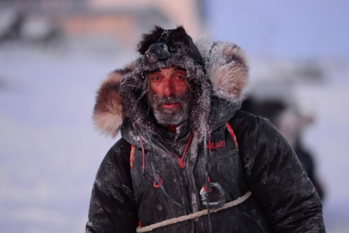 Tony Browning was the first musher to cross the finish line of the 2021 Kobuk 440. (Photo by Berett Wilber, KOTZ – Kotzebue)