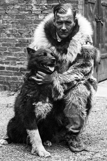 Balto with musher Gunnar Kaasen. National Institutes of Health