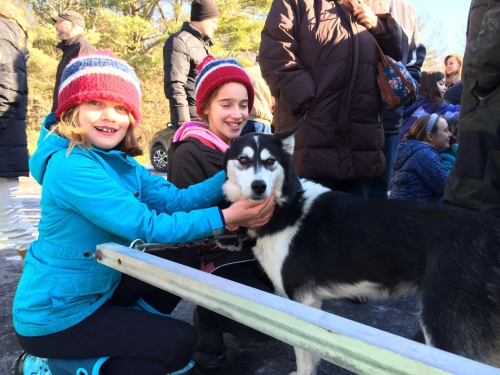 Savannah Price and Katherine Price, left and right, pet Savannah, a five-year-old Siberian husky during a presentation on mushers and dogsleds at the Clifton Park-Halfmoon Library