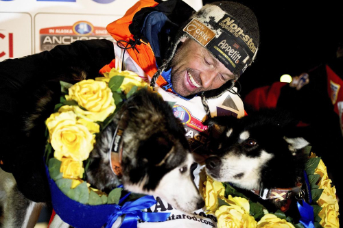 WINNER — Thomas Waerner, of Norway, arrives in Nome, Alaska, on Wednesday to win the Iditarod Trail Sled Dog Race. Marc Lester