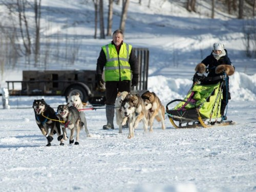 The 40-mile race starts at Knik Lake, ventures down the Iditarod Trail for 20 miles to the Nome sign, and loops back to Knik. The 10-mile race also goes down the Iditarod Trail, but only for five miles before turning back.  Courtesy photo taken by Arien Sanderson.