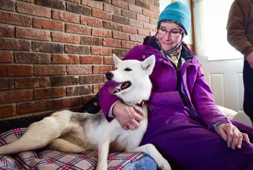 Bonnie Nessia sits with her dog Portia. Bonnie and her spouse, Jim, are hoping to get their dogs back in competition next winter after a lost season due to COVID-19.  ALEX COOPER/OBSERVER-DISPATCH