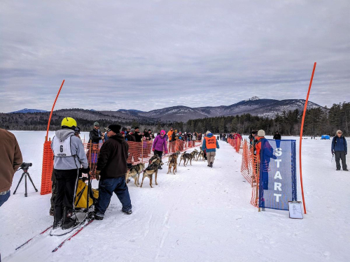 The start of the 2019 dog sled race on Lake Chocorua, with Mount Chocorua in the distance. CREDIT JASON MOON / NHPR