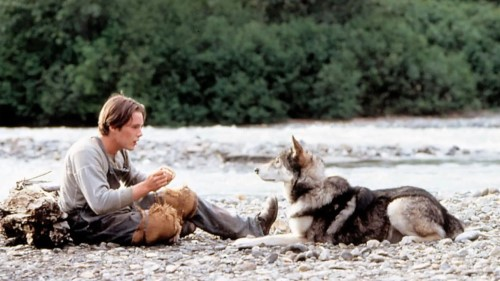 The 1991 adaptation of White Fang stars Ethan Hawke as the young hero, trying to strike it rich in the Klondike Gold Rush, who bonds with the titular wolf-dog (Credit: Alamy)