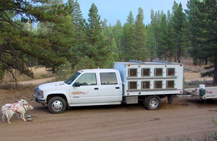 Sled Dog Central Dog Truck Photos Page 4